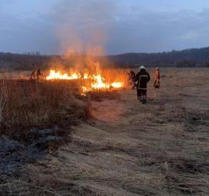 Хустські вогнеборці приборкали пожежу в Долині нарцисів