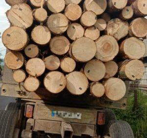 У Рахові поліцейські затримали вантажівку із сумнівною деревиною
